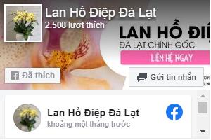 lanhodiep-fanpage
